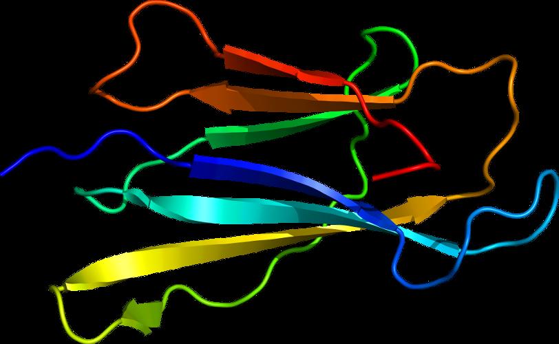 発i�y��9�9b���b9.#�/g9�*_lineage for d1cg9b1 (1cg9 b:2-100)