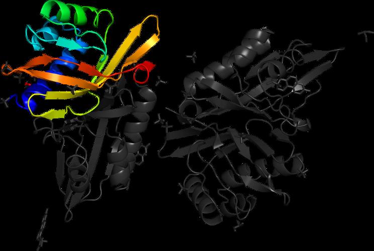 delta 5-3-ketosteroid isomerase
